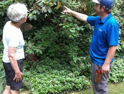 Plant Health Care Professional will discuss any plant issues with you.