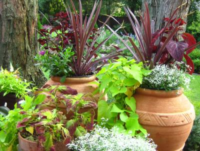 Grouping of assorted pots