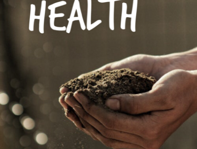 Healthy soil determines the health of the lawn.