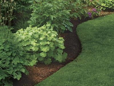Nothing sets off a garden bed than a crisp, clean edge.