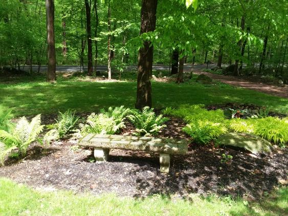 A mulched, landscaped bed with shade loving plants.