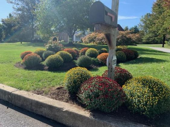Curb appeal can be greatly enhanced when you visualize and plan for the final look.