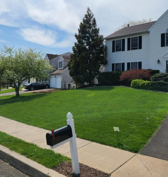 A healthy, green lawn adds tremendous curb appeal to a home.