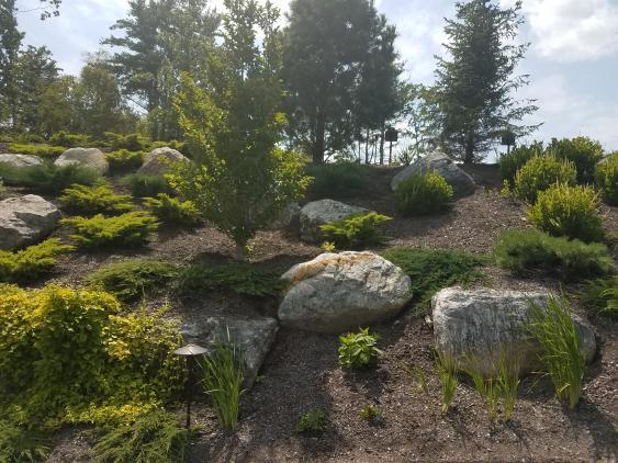 Boulders upgrade landscaping.