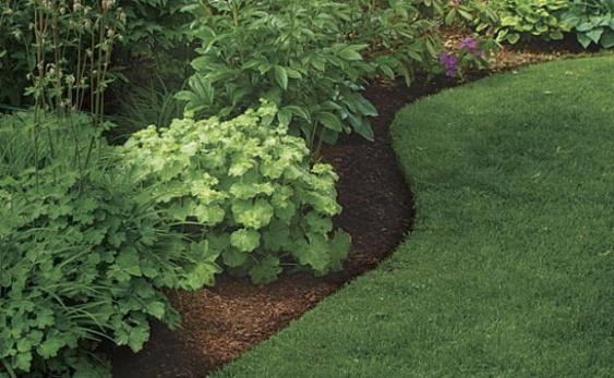 Curved beds soften any landscape.