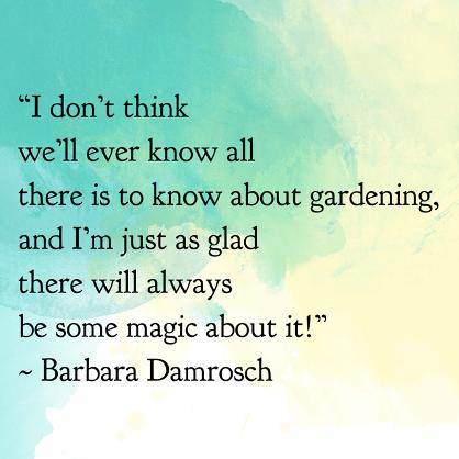 Landscaping Wisdom!