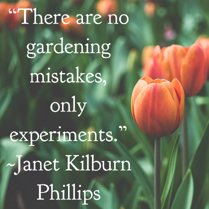 Even More Landscaping Wisdom!