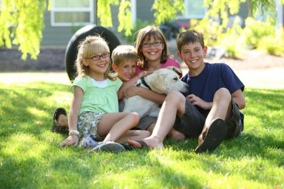 Our lawn care program is safer for children and pets.