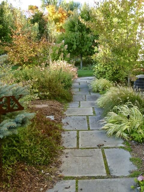 Landscaping Your Side Yard : Side yard landscaping and pathways whitehouse