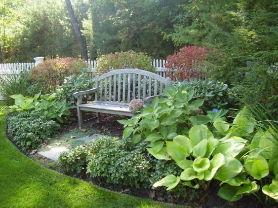 Shrubs, hostas, and pachysandra surround this welcoming bench.