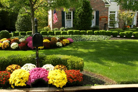 By properly edging, mulching and planting flowers your landscape beds will increase your curb appeal a lot.