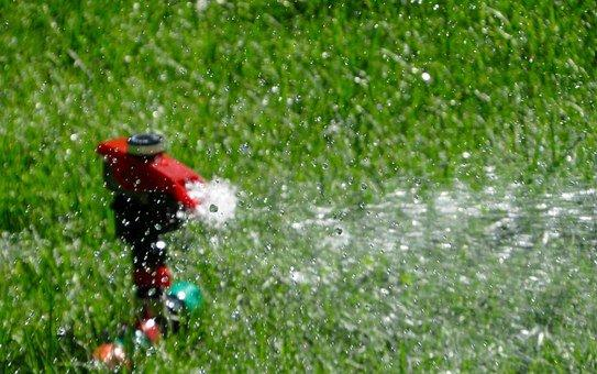 Deep but infrequent watering for lawn is best.