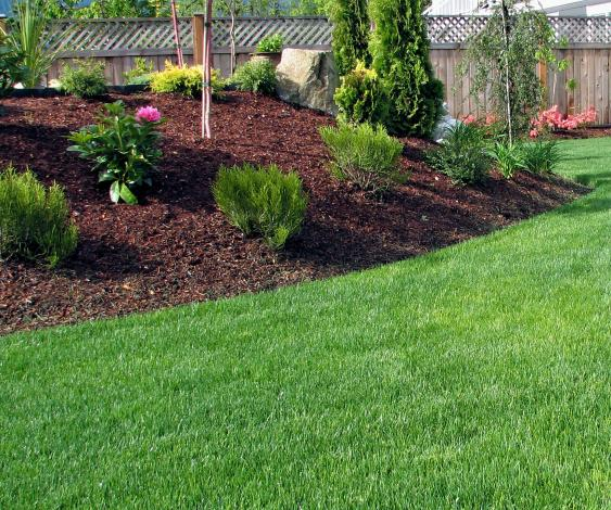 Landscape Maintenance Services keep lawns healthy and green and beds weed free.