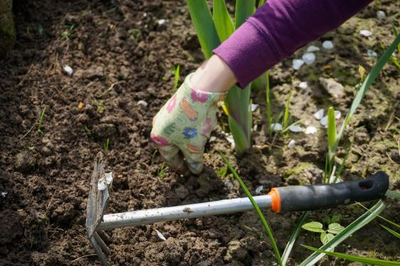 Digging out weeds is time consuming at first but the more often you weed, the less time it takes.