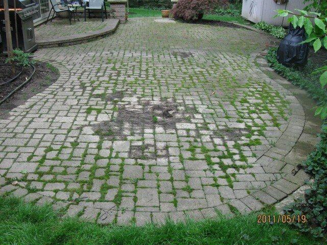 Paver patio cleaning for Cleaning concrete patio