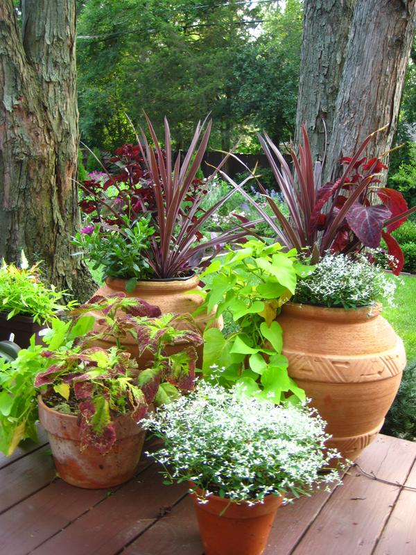 Ideas And Tips For Container Planters Whitehouse Landscaping