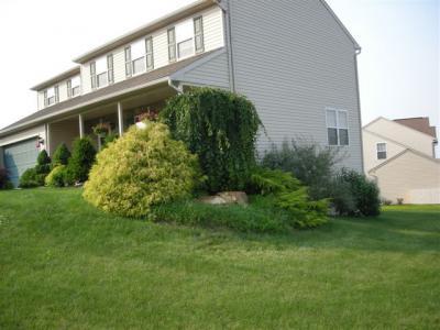 Landscaping Shillington, PA
