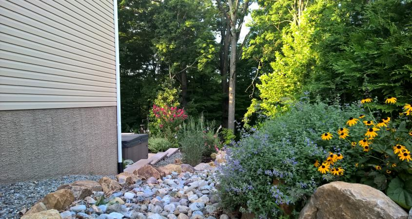 Landscaping in Pottstown, PA with stones and black eyed susans