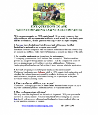 5 Questions to Ask when Comparing Lawn Care Companies