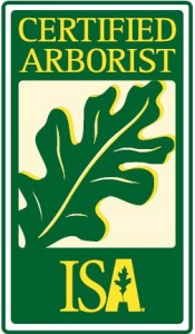 Whitehouse Landscaping is a certified arborist that offers tree services