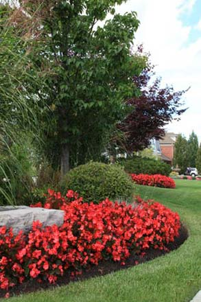 Landscape Maintenance in Wyomissing, PA