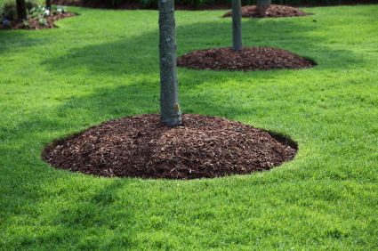 Landscape Maintenance in Collegeville, PA