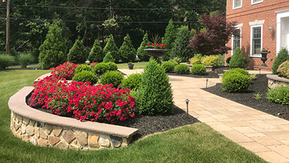 Malvern landscaping with shrubs