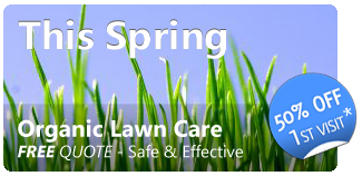Organic Lawn Care - Free quote this spring